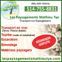 mathieu_tye_mars_2020